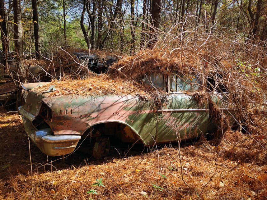 A Visit to Old Car City USA | Hardiman Images